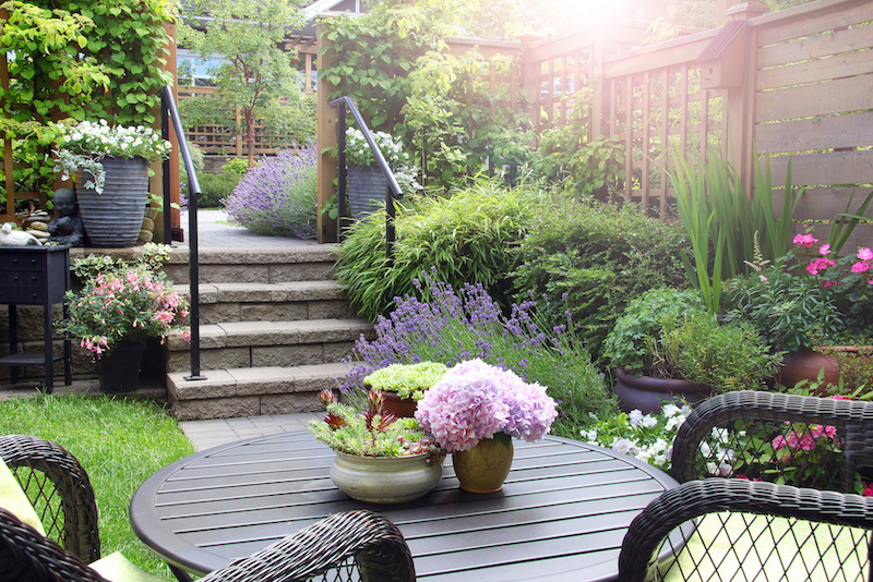 Small townhouse patio summer garden